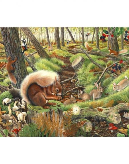 House of Puzzles Save our Squirrels Jigsaw