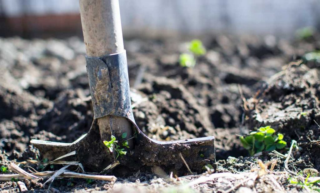 Garden Tools & Equipment