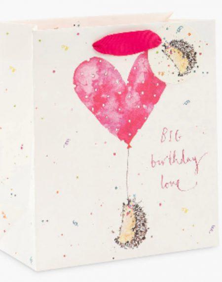 Lousie Mulgrew Hedgehog gift bag